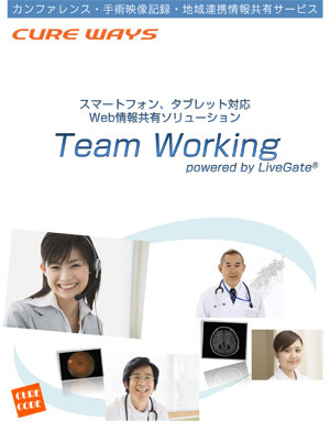 Team Working パンフレット